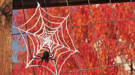 Free Crochet Halloween Spider Web Patterns